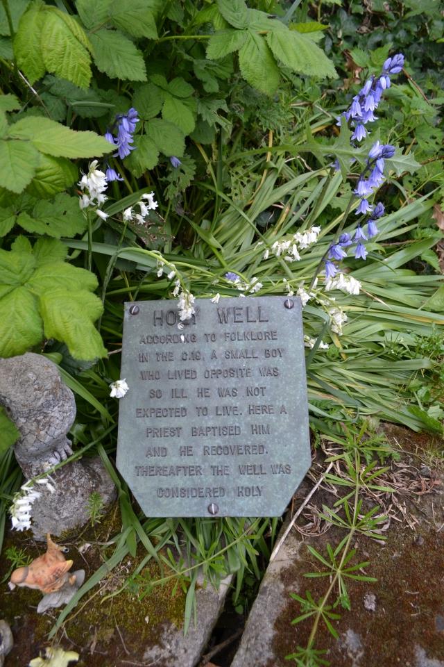 Watnall Holy Well (5)